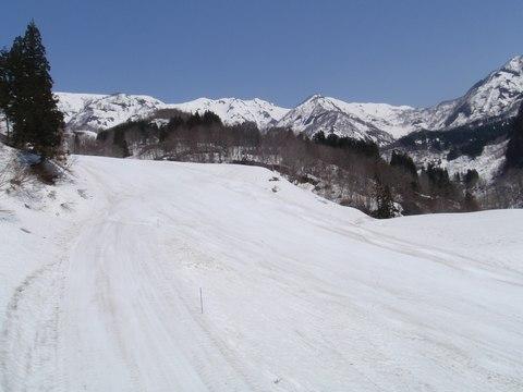 ohara1.jpg